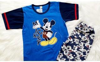 Mickey mouse син